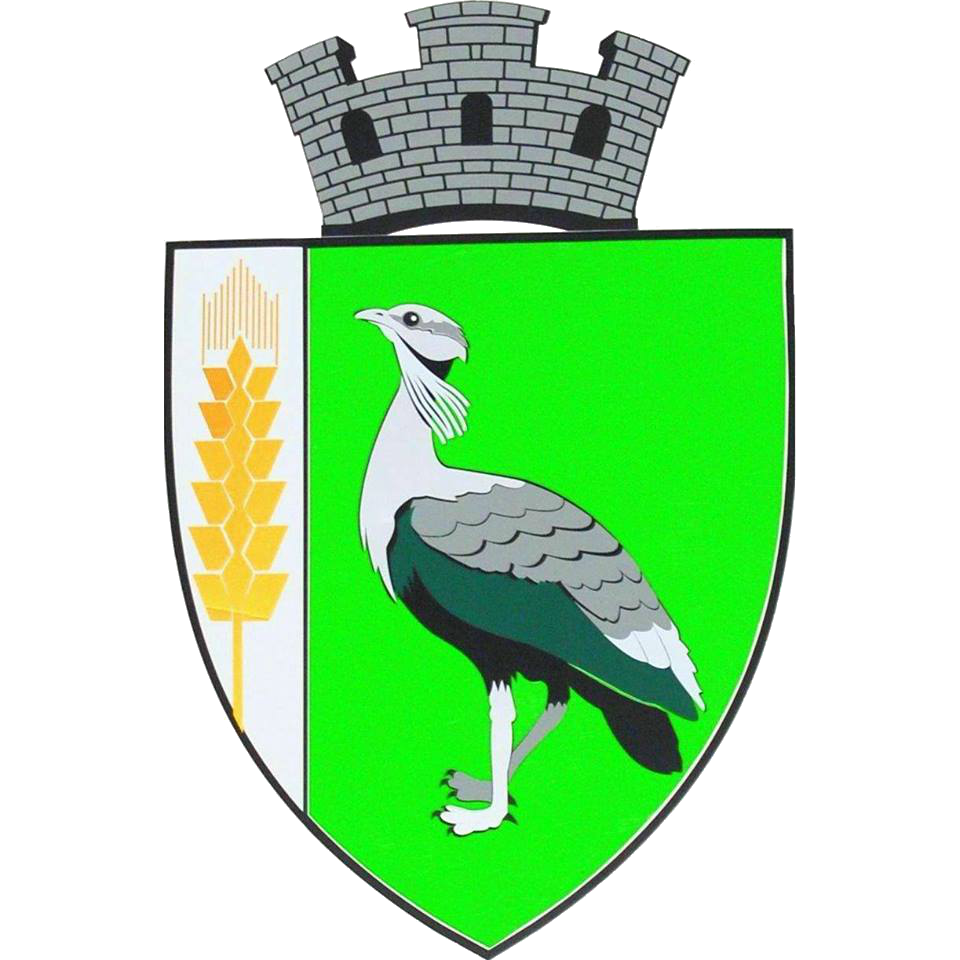 Primăria Drochia